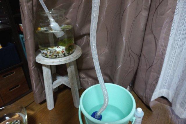 ポンプ 水槽 掃除